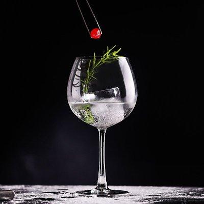 卡摩西 金湯力雞尾酒杯 葡萄酒杯蛋型高腳杯 圓形酒杯水果酒杯 Gin Tonic酒吧用具