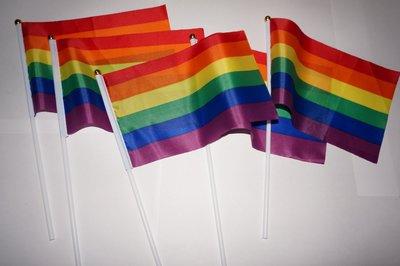 彩虹旗 手搖旗款 便攜型 21X14cm同性同志多元成家RAINBOW FLAG gay pride 同志遊行 婚姻平權