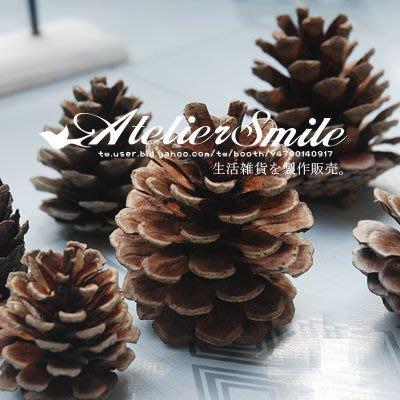 [ Atelier Smile ] 鄉村雜貨 原始森林 可愛天然松果 拍照攝影背景 #聖誕裝飾 (現+預)