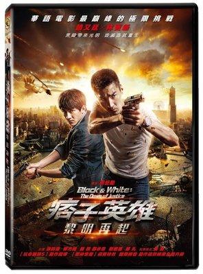 <<影音風暴>>(全新電影1805)痞子英雄2:黎明再起  單碟版  DVD  全125分鐘(下標即賣)48