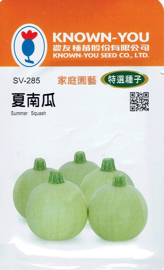 四季園 夏南瓜Summer Squash (sv-285) 白綠球狀 【蔬果種子】農友種苗特選種子 每包約10粒