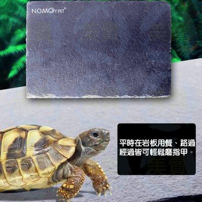 美賣 烏龜 陸龜 15*10 天然 岩板 磨甲岩板 石板 保暖 保溫 磨甲 食盤 保濕 蘇卡達 蜥蜴 守宮 蠍子