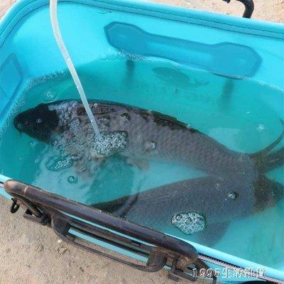 釣魚桶 魚護桶eva加厚多功能釣魚桶 ...