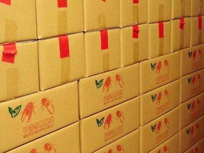 ***甲蟲王國***-NO.J1993-01-甲蟲專用高營養果凍(香蕉口味X350顆,6公斤整箱下標區)