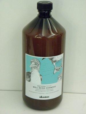 香水倉庫~ davines 特芬莉(達芬尼斯) 樂活紫菊洗髮露 1000ml (特價950元~2瓶免運) 高雄可自取