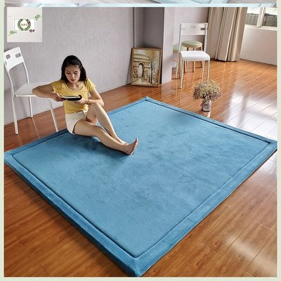 新品上架地毯臥室夏天冬天都可用少女夏季薄款房間墊子地墊可睡可坐床