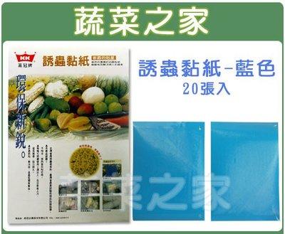全館滿799免運【蔬菜之家003-A02】誘蟲黏紙(藍色黏蟲紙)20張入※此商品運費請選擇宅配貨運※