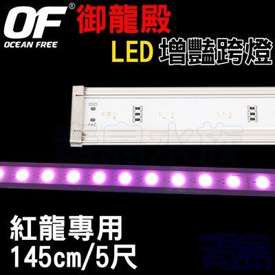 A。。。青島水族。。。AL521新加坡OCEAN FREE仟湖---OF御龍殿LED增豔跨燈==紅龍/145cm/5尺
