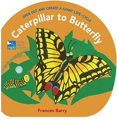 *小貝比的家*CATERPILLAR TO BUTTERFLY/OPEN OUT AND CREATE A GIANT