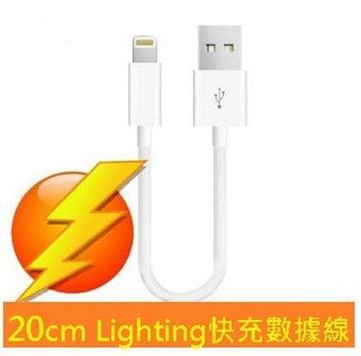 APPLE 20cm Lighting 8pin 20公分 充電數據線 iPhone7 5S 6S Plus iPad