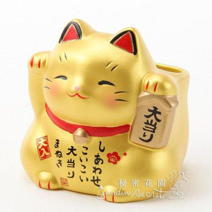 招財貓--日本製藥師窯金色招財貓置物擺飾/開店送禮--秘密花園