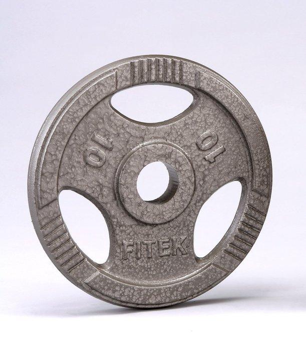 【Fitek 健身網】28m/m孔徑☆10公斤槓片*2片☆10KG鑄鐵手抓孔槓片☆舉重、健力、重量訓練適用