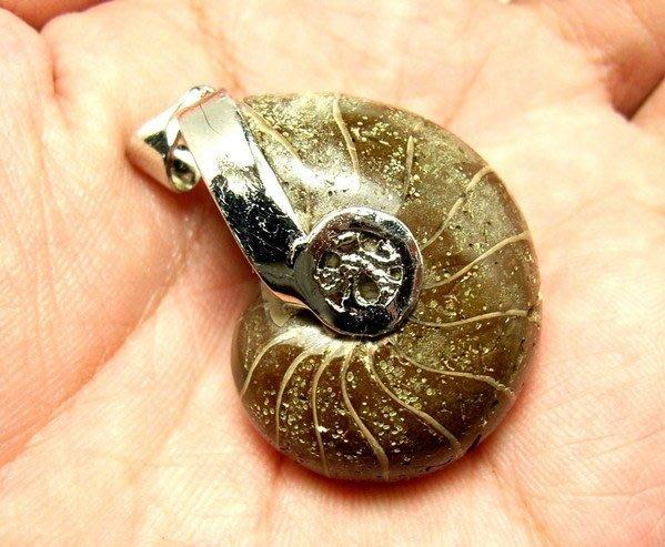 小風鈴~天然高檔包框完整斑彩螺化石墜子(鸚鵡螺)(重24.1g)