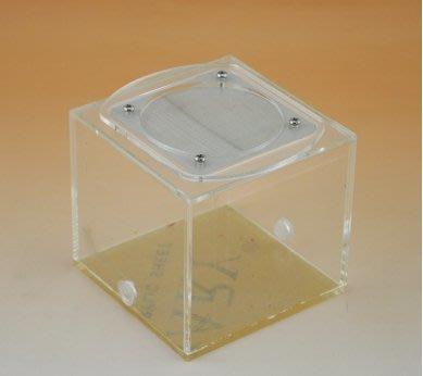 【新奇屋】昆蟲觀察飼養盒 螞蟻連結活動區餵食盒 螞蟻石膏巢盒 小型爬蟲盒 微生態觀察(8.7*8.7*8.2cm)