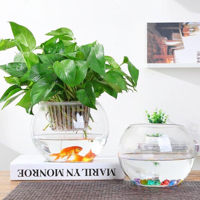 #創意 裝飾品 居家水培植物玻璃瓶透明圓形花瓶客廳桌面銅錢草花盆魚缸水培綠蘿花瓶