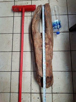 台灣檜木厚油花重量7公斤,乾材10年以上,需自取6800
