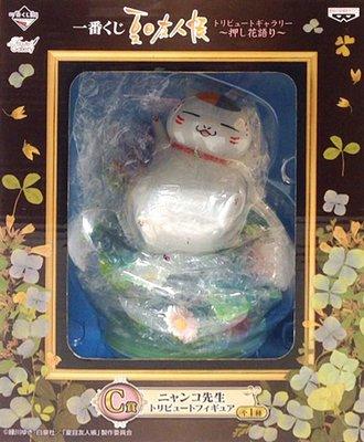 日本正版 一番賞 夏目友人帳 星空之下 C賞 貓咪老師 公仔 模型 日本代購