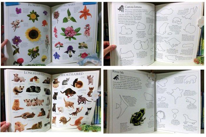 *【兒童英語繪本】*The giant Sticker Book 圖片亮麗生動貼紙繪本, 超過上百張精美貼紙