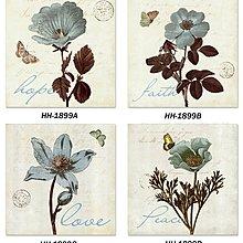 美式植物花卉圖譜裝飾畫畫心12色高清微噴不褪色沙發背景畫