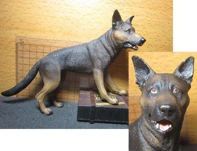 Z3動物部門 PLAYHOUSE海豹部隊1/6軍犬狼狗一隻