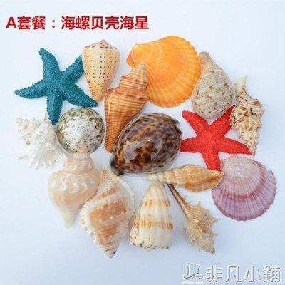 魚缸擺件 天然海螺貝殼珊瑚大海星水族箱裝飾魚缸造景套餐工藝品擺件母海膽   JD   全館免運
