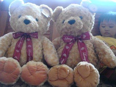 ///可愛娃娃///~ 大型綁紅色蝴蝶結緞帶的玫瑰紋泰迪熊絨毛娃娃~有腳掌---長約70公分