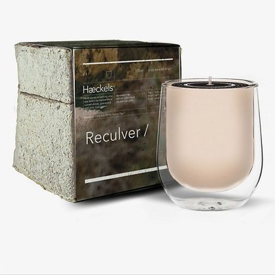 HAECKELS Reculver 香氛蠟燭 蠟燭 270g 英國代購