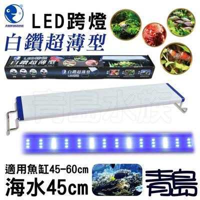 Y。。。青島水族。。。YX-45-B台灣paopaozone泡泡龍-白鑽超薄型LED跨燈 珊瑚 藍白燈==海水45cm 新北市