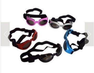 酷旋寵物眼鏡/貓狗眼鏡/狗狗太陽眼鏡/寵物防護眼鏡/狗眼鏡/寵物造型眼鏡XL號(大型犬下標處)/JOY精品百貨館推薦