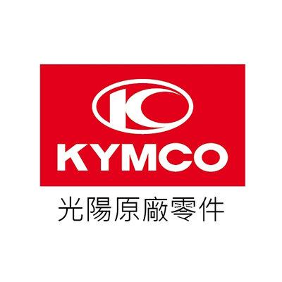 KYMCO光陽原廠零件 NEW Many125 前土除 平光黑