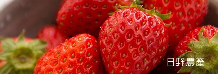 日野農產  日本空運來台愛知縣草莓イチゴ!!11/19出貨(大盒500g)