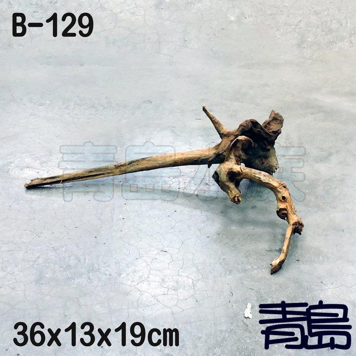 五1↓。。。青島水族。。。B-129煙燻沉木 黃金流木 莫絲 莫斯 默思 青龍石 造景==36*13*19cm