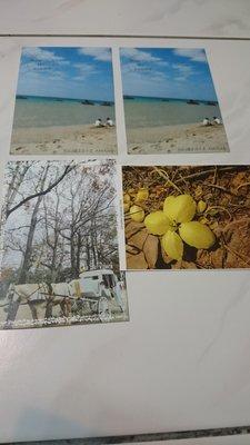 各種風景、水果、蔬菜漂亮明信片  (四張臺南知事官邸已售出)
