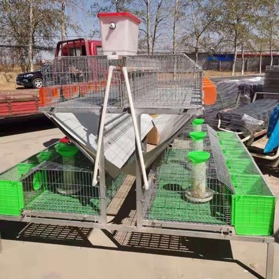 歐式兔籠廠家直銷兔子籠子養殖兔籠加粗加密歐式養殖籠階梯兔籠天天百貨