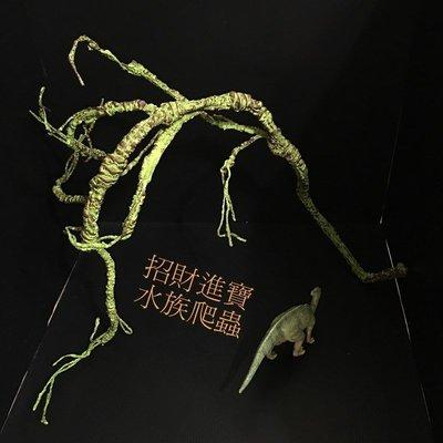 樹枝款可變型 攀爬 樹藤 藤條 藤蔓 守宮 綠鬣蜥 變色龍 蜘蛛 昆蟲 蛇 爬蟲 蜥蜴 屋 寵物 籠 網箱 盒 飼養 箱