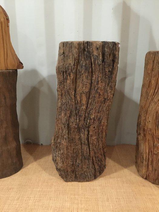 【 檜人檜語 】 楠木 超風化 原木 花檯A1