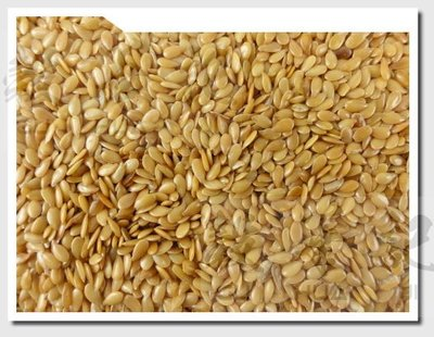 黃金亞麻籽 - 600g 穀華記食品原料