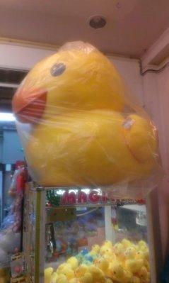 【佳佳小舖】黃色小鴨 大黃鴨抱枕 巨無霸款 36吋目前 市面上最大款毛絨娃娃 現貨