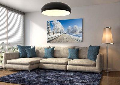客製化壁貼 店面保障 編號F-179 冬季景觀 壁紙 牆貼 牆紙 壁畫 星瑞 shing ruei