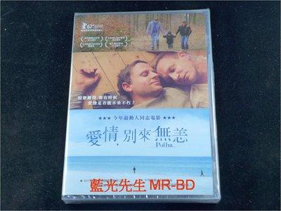 [DVD] - 愛情別來無恙 Paths ( 台灣正版 )