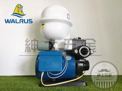 【紳士五金】❤️超熱銷款❤️TP820PT 1/4HP 大井泵浦WALRUS 傳統式 塑鋼加壓機 不生鏽 含溫度開關