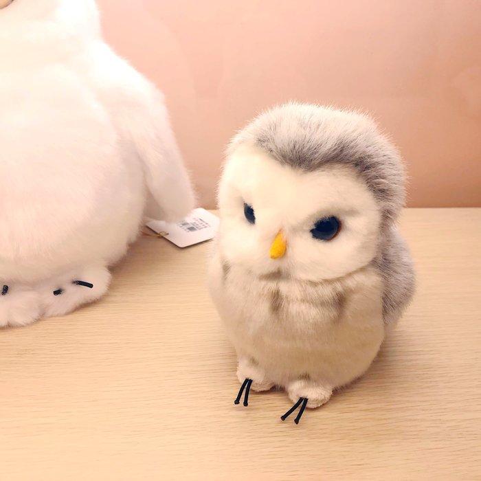 日本草地貓頭鷹娃娃,店內最熱銷款~最特別的禮物都在奧爾思~