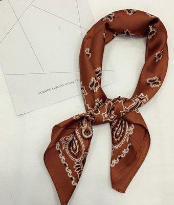 (輕舞飛揚)新款韓國復古文藝小方巾 仿絲綢百搭圍巾 裝飾領巾四方絲巾薄 磚紅