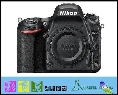 彩色鳥(租相機 相機出租 鏡頭出租 租鏡頭)  Nikon D750 出租 Nikon Nikkor 58mm F1.4