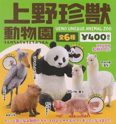 【奇蹟@蛋】海洋堂(轉蛋)上野珍獸動物園 全6種 整套販售   NO;5103