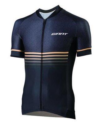 全新 2019 公司貨 捷安特 GIANT 男款自行車短袖車衣 ALL ROUNDER 賽道