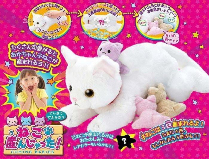 佳佳玩具 ----- 正版授權 日本SEGA 生寶寶小寵物 貓咪SG80124【053092557】