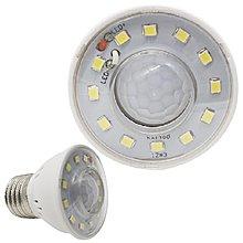 E27 LED 燈泡 LED燈泡 節能燈泡 省電燈泡 感應燈 光控燈 正白光 紅外線 燈珠(17-1520)