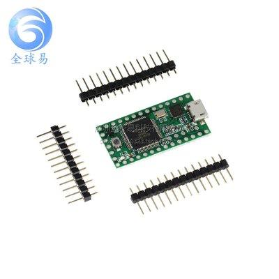Teensy 3.1 USB AVR開發板 鍵盤滑鼠 ISP U盤實驗板 W177.0427