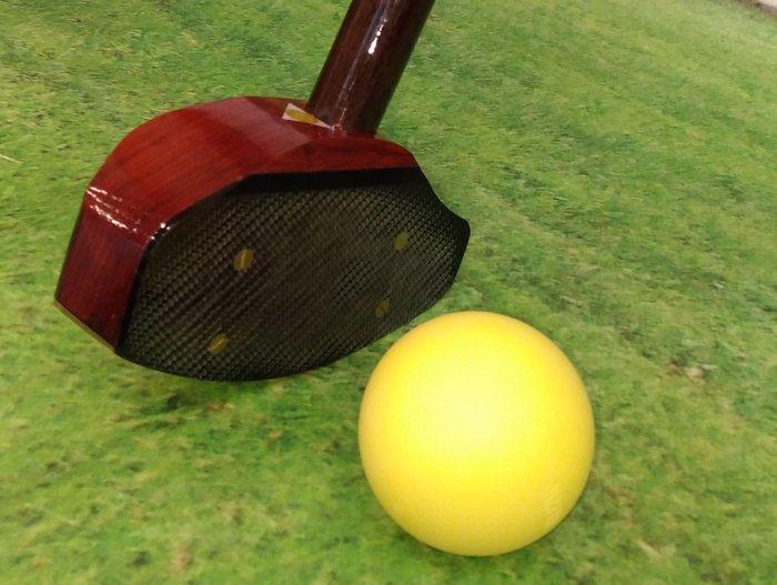 2019年最新金龍型世樺地面高爾夫球桿 運動器材 / 附球袋一只 及 球3顆